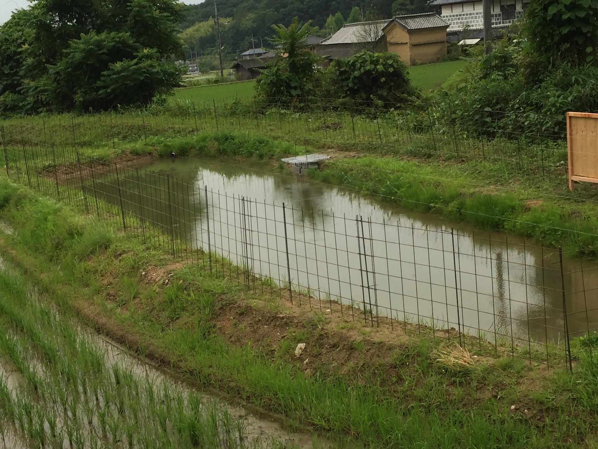 赤磐げんこつナマズ養殖場のイメージ